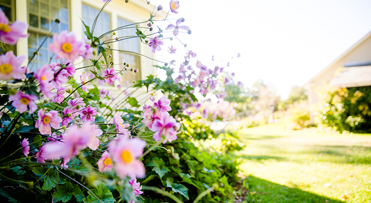Will the Housing Market Bloom This Spring?   Simplifying The Market